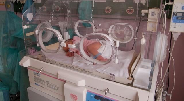 Jeden z inkubatorów zakupionych przez WOŚP w szczecineckim szpitalu.