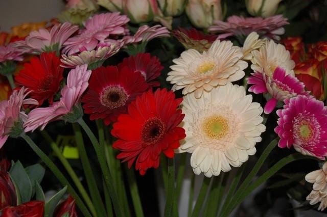 życzenia Na Dzień Nauczyciela 2015 Najpiękniejsze życzenia