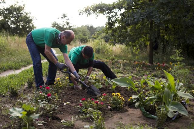 Od 15 marca do 16 kwietnia będą trwały konsultacje społeczne, dotyczące zakładania i funkcjonowania ogrodów społecznych oraz ogrodów społecznych parcelowych.
