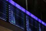 Wynik wyborów może zatem delikatnie wesprzeć wycenę euro do innych walut.