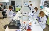 Czy koronawirus przenosi się w listach i paczkach? Raport WHO potwierdza fakty i mity o koronawirusie. Prawda o SARS-CoV-2
