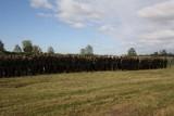 Żołnierze inowrocławskiego pułku ćwiczą w Zajezierzu
