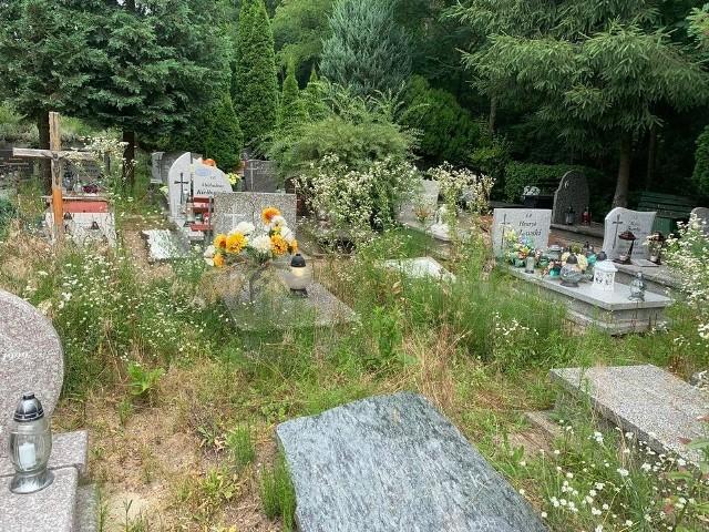 Zielonogórzanie chcieliby, aby na cmentarzu przy ul. Wrocławskiej panował, jak największy porządek