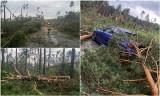 Nawałnica pod Sycowem! Drzewa łamały się jak zapałki, z nieba padał grad