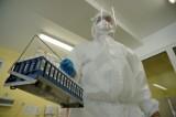 Ponad 700 nowych przypadków koronawirusa [raport - 12.08]