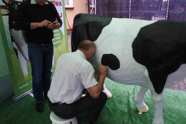 W przeprowadzonym przez Wielkopolskie Centrum Hodowli i Rozrodu Zwierząt w Poznaniu z/s w Tulcach Mistrzostwach Dojenia Sztucznej Krowy wzięło 85 osób w tym 46 kobiet oraz 39 mężczyzn. Najlepszy wynik w kategorii kobiety zdobyła Pani KAROLINA GOŁĘBIEWSKA z Poświętne, która wydoiła w trakcie 30 sekund 1535 ml mleka, tym samym zdobyła tytuł MISTRZYNI Dojenia Sztucznej Krowy.