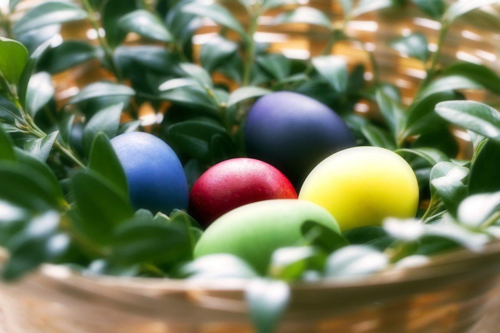 Piękne życzenia Wielkanocne Sms śmieszne Krótkie Poważne