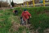 Światowy Dzień Ziemi w gminie Goworowo. Mieszkańcy Wólki Brzezińskiej i Lipianki 22.04.2021 sprzątali swoją okolicę
