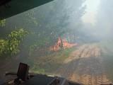 Pożary lasów w regionie. Strażacy i leśnicy apelują o rozwagę (ZDJĘCIA)