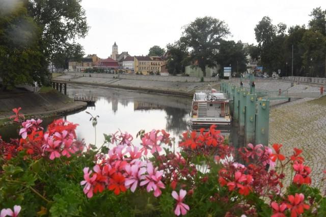 Nowa Sól to miasto nad Odrą, które ma własny statek. Kiedy jest odpowiedni poziom wody w rzece, odbywają się rejsy.
