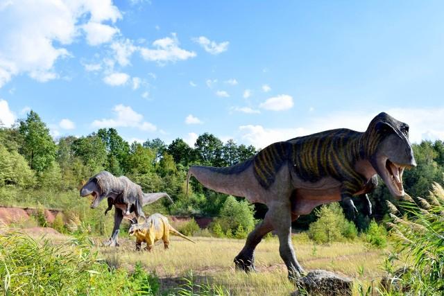 JuraPark Krasiejów obchodzi w tym roku 10-lecie istnienia. Znajduje się tu prawie 250 modeli dinozaurów naturalnej wielkości.Zobacz kolejne zdjęcia. Przesuwaj zdjęcia w prawo - naciśnij strzałkę lub przycisk NASTĘPNE