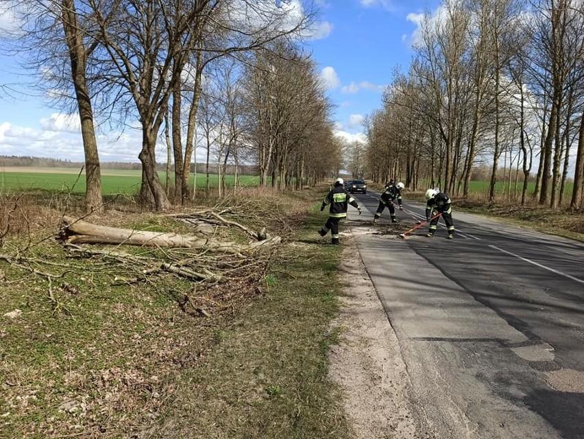 Dzisiaj (poniedziałek) z powodu silnego wiatru w Uliszkowicach (gm. Trzebielino) przewróciło się drzewo. To droga wojewódzka nr 209. Zawalidrogę usunęli strażacy z OSP w Trzebielinie.