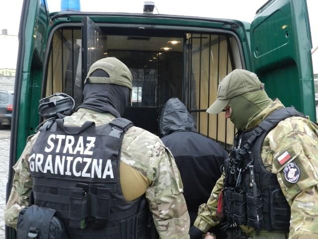 Zarzut kierowania grupą przestępczą lub udziału w takiej grupie usłyszały trzy osoby zatrzymane przez funkcjonariuszy z Nadodrzańskiego Oddziału Straży Granicznej. Zatrzymani mieli organizować przerzut obywateli Ukrainy do Wielkiej Brytanii. Zabezpieczono ponad 100 dokumentów wykorzystywanych do nielegalnego przekraczania granicy.6 grudnia funkcjonariusze z Nadodrzańskiego Oddziału Straży Granicznej przeszukali kilka miejsc jednocześnie w powiecie zgorzeleckim oraz bolesławieckim i zabezpieczyli 98 polskich dowodów osobistych, a także polskie i ukraińskie paszporty, prawa jazdy (w tym jedno podrobione), oświadczenia o zamiarze powierzenia wykonywania pracy cudzoziemcom. Dodatkowo zabezpieczyli kilkadziesiąt telefonów komórkowych, karty SIM i startery komórkowe oraz laptopy.W związku ze sprawą zatrzymano trzy osoby, dwóch mężczyzn w wieku 57 i 29 lat z powiatu bolesławieckiego i 50-letnią kobietę ze Zgorzelca. Mężczyznom przedstawiono zarzut udziału w zorganizowanej grupie przestępczej zajmującą się organizowaniem nielegalnego przerzutu obywateli Ukrainy do Wielkiej Brytanii, a kobiecie – kierowanie tą grupą. Wobec 29-latka i 57-latka zastosowano poręczenie majątkowe w wysokości 5 tysięcy zł. W przypadku 50-latki prokurator zdecydował, że kwota poręczenia wynosić będzie 30 tys. zł. Po przesłuchaniu zatrzymanych i zastosowaniu poręczenia majątkowego, zostali zwolnieni.Na trop grupy przestępczej funkcjonariusze straży granicznej z Zielonej Góry wpadli w 2015 roku. Dzięki prowadzonym działaniom i współpracy z policją brytyjską oraz komendą główna straży granicznej i placówką straży granicznej w Zgorzelcu, namierzono polskich sprawców przestępstwa i zebrano dowody umożliwiające ich zatrzymanie i przedstawienie im zarzutów.Najpierw obywatele Ukrainy, korzystając z wystawionych oświadczeń o zamiarze powierzenia cudzoziemcowi wykonywania pracy w Polsce, ubiegali się o wizę w placówce dyplomatycznej na Ukrainie. Po otrzymaniu wizy wjeżdżali do Polski i stąd, korzystając z do