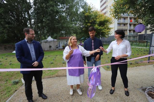 Lawendowy ogród w Katowicach został otwarty. To największy ogród społeczny w mieście. Zobacz zdjęcia >>>