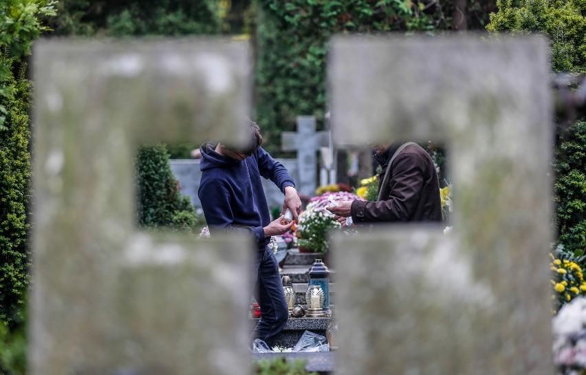 Oto jedne z najpopularniejszych tekstów, jakie można usłyszeć na polskich cmentarzach. Pierwszy z nich: - A te niekoniecznie ładne znicze to chyba teściowa kupiła