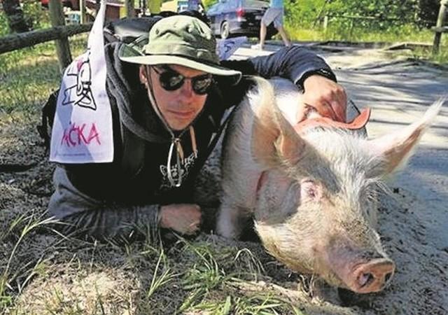 - Dla Raćki ta trasa to megawyczyn. Jest rekordzistką świata, jeśli chodzi o to, co może świnia! - podkreśla Lewandowski.