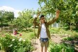 Ile kosztują ogródki działkowe w Toruniu? Oto ceny i lokalizacje