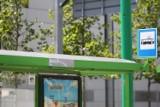 Przystanek Bałtyk znów dla autobusów. Od 1 sierpnia [ZDJĘCIA]