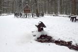 Bajeczne krajobrazy w Puszczy Jodłowej. Święta Katarzyna zimą zachwyca [WIDEO, ZDJĘCIA]