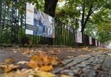 """Projekt """"Manifesto"""" w Gdańsku Oliwie. Wystawa fotografii oburza, ale i daje do myślenia"""