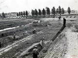 Stadion Startu Lublin na archiwalnych zdjęciach. Zobacz, jak powstawał późniejszy stadion lekkoatletyczny