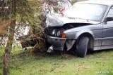 Stalowa Wola. Bmw uderzyło w drzewo, czteroosobowa rodzina, w tym dwójka małych dzieci, trafiła do szpitala (ZDJĘCIA)