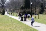 Tłumy w Parku Śląskim. To oaza na lockdownowej mapie Śląska. Ludzie spacerują, jeżdżą na rolkach i rowerze