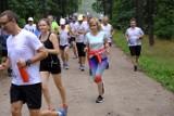 Parkrun Toruń - zobacz zdjęcia z sobotniego biegu w lasku na Skarpie