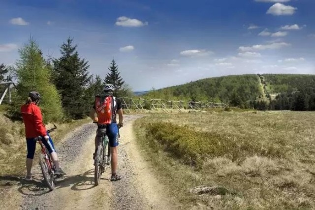 Dolny Śląsk to lider turystyki rowerowej w kraju – pokazują to ogólnopolskie badania prowadzone przez Polską Organizację  Turystyczną. Dolnośląskie trasy – a mamy ich 160 o łącznej długości 8000 km - znalazły się między innymi na dwóch pierwszych pozycjach w krajowym rankingu tras rowerowych (Strefa MTB Sudety oraz Rowerowa Kraina - w Karkonoszach i okolicy). Wysoko znalazł się też obszar Doliny Baryczy, a Singletrack Glacensis został odnotowany jako lider zestawienia.Również przeprowadzone przez DOT internetowe badanie turystów rowerowych wskazują, że Dolny Śląsk jest liderem turystyki rowerowej, a użytkownicy tras oceniają je bardzo wysoko. Na kolejnych stronach prezentujemy najwyżej oceniane przez rowerzystów i najbardziej malownicze trasy rowerowe na Dolnym Śląsku. Wśród nich są trasy nizinne, podgórskie i lekkie trasy MTB. Zobaczcie.