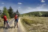 Oto najpiękniejsze trasy rowerowe na Dolnym Śląsku [ZDJĘCIA]