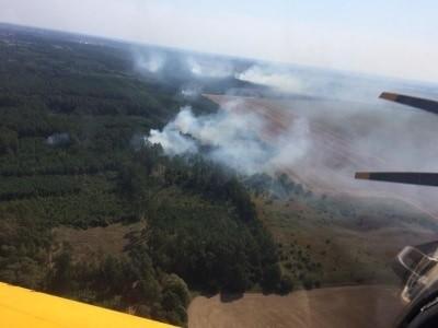 Pożar wybuchł w niedzielę około południa. Zdjęcie wykonał Jarosław Szymański, pilot samolotu gaśniczego