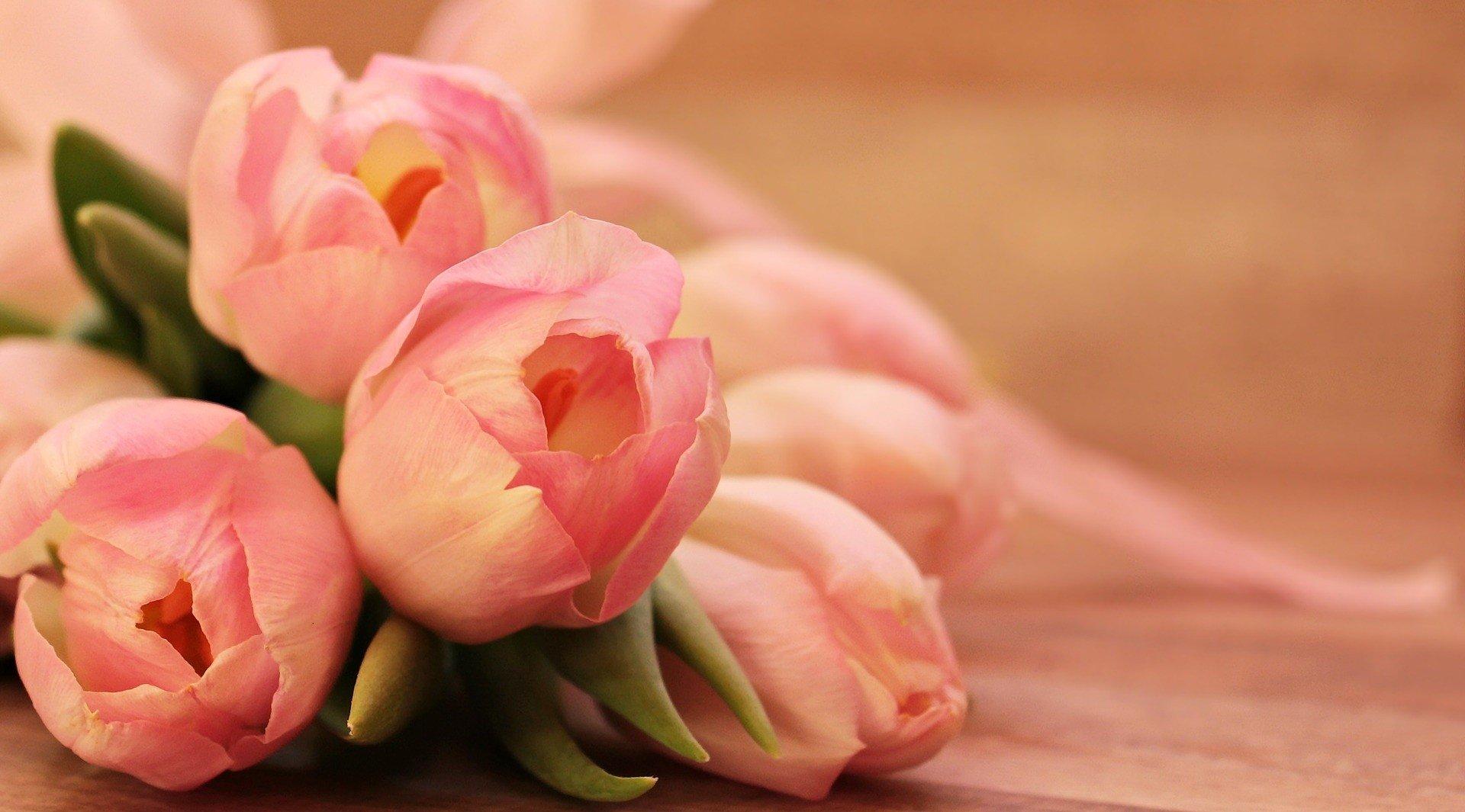 życzenia Na Dzień Matki 2018 Sms Piękne Krótkie Poważne