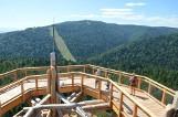 Ciężkowice. Budowa ścieżki w koronach drzew znowu przełożona. Gmina nie składa jednak broni i chce zrealizować podniebną trasę