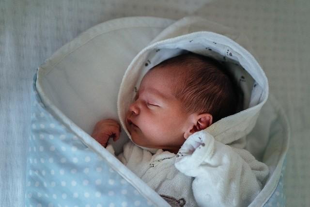 W styczniu 2020 roku w Urzędzie Stanu Cywilnego w Bydgoszczy zarejestrowano 521 noworodków