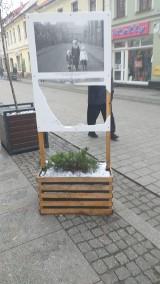 Chełmno. Zdewastowano wystawę archiwalnych zdjęć na ul. Grudziądzkiej w Chełmnie