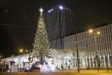 Miejska choinka w Łodzi gotowa. Świąteczna iluminacja rozbłyśnie 1 grudnia