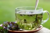 Te rośliny mają właściwości lecznicze. Co pomoże na ból brzucha, gardła, zęba czy przeziębienie?