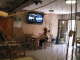 Chata rybaka. Nowa restauracja rybna