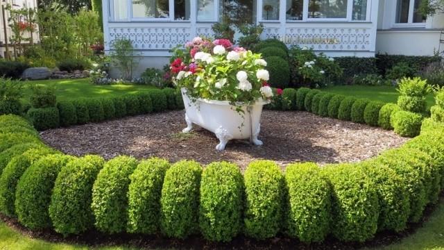 Formowane krzewy np. bukszpanu można mieć nawet w niewielkim ogrodzie. Warto, żeby tworzyły przemyślany układ.