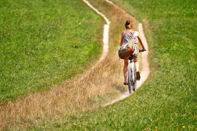 KARTUSKA PRZYRODNICZA TRASA ROWEROWATrasa: Kartuzy – Łapalice - Pomieczyńska Huta – Kolonia – Sianowo Długość: 26 kmŚcieżka rowerowa przebiega przez malownicze i rzadko odwiedzane tereny gminy Kartuzy. Szlak prowadzi głównie przez lasy i pola uprawne - tym samym jest doskonałą propozycją na całodzienną wycieczkę dla całej rodziny i obcowanie z przyrodą oraz lokalną kulturą.