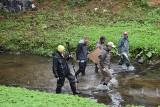 Święto Rzeki Białej. Spacerowali po rzece i rozmawiali. Zimna woda i deszcz im nie przeszkadzały (ZDJĘCIA)