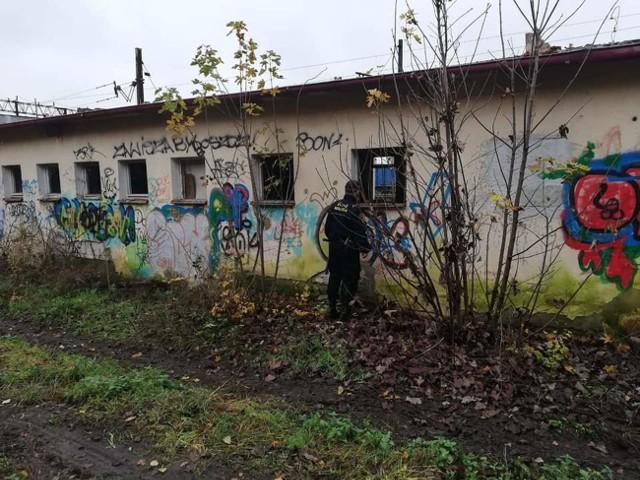Straż nicy miejscy z Inowrocławia znajdują bezdomnych w pustostanach, na dworcu, na ogródkach działkowych czy w klatkach schodowych
