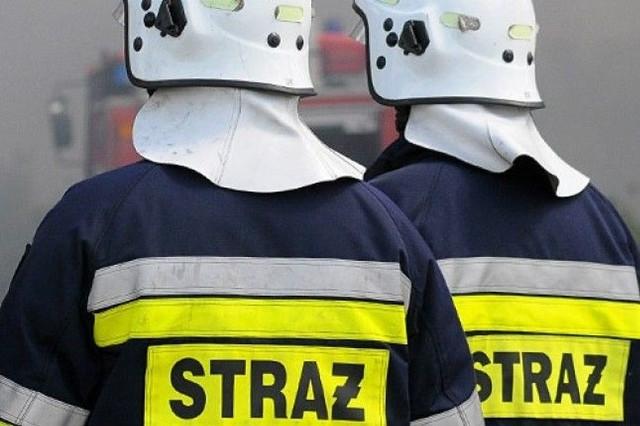 Na szczęście strażacy nie musieli ewakuować mieszkańców bloku.