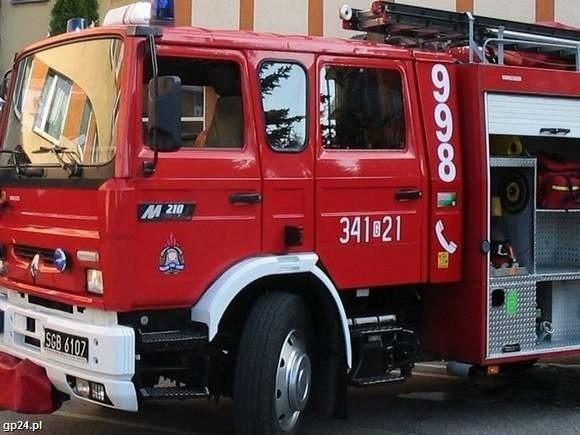 Siedmioro dzieci zostało rannych w wypadku busa.