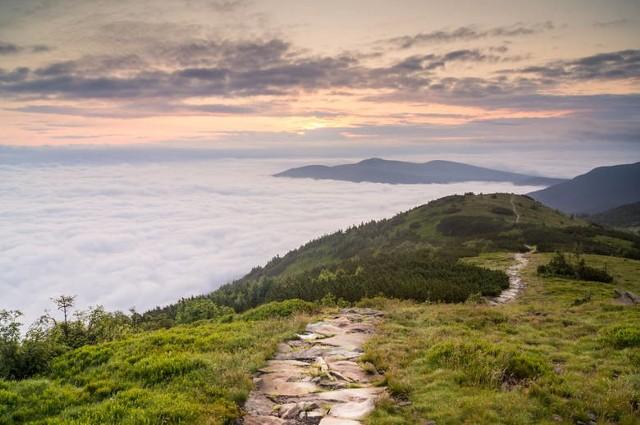 Szlak z Małej Babiej Góry w stronę przełęczy Brona - zdjęcie ilustracyjne