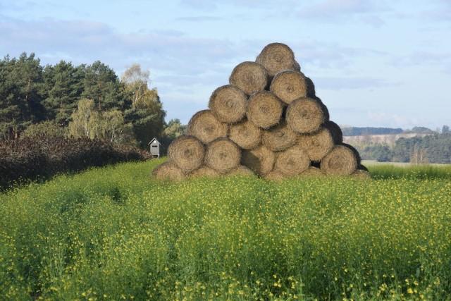 Izba Rolna w Opolu proponuje rolnikom działania, które mają służyć zatrzymywaniu wody w gruncie.