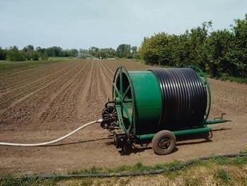 Przy pomocy takich urządzeń rolnicy nawadniają pola w Mniszowie Kolonii Fot. Arkadiusz Fularski