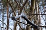 Zielona Góra. Wieszaki w lesie. Dlaczego ktoś porozwieszał je na drzewach i zanieczyszcza nasze zielone płuca?
