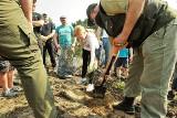 Pracownicy zielonogórskiej firmy LIT Polska całymi rodzinami zasadzili pół hektara lasu w okolicach Zawady