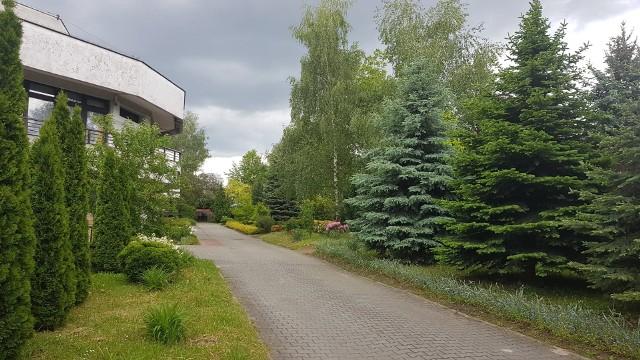 W hospicyjnym ogrodzie odbędzie się wyjątkowy koncert dla pacjentów i medyków